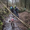 Sun 12th Feb : Bikers Negotiating Fallen Trees In The Dark Forest
