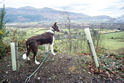 Mon 12th Dec : Katie Looking At The View