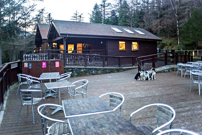 Mon 5th Dec : The Whinlatter Forest Park Visitor Centre