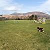 Wed 15th Mar : Back At Castlerigg Stone Circle