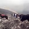 Wed 25th Jan : Skiddaw Descent : Carlside Tarn Below
