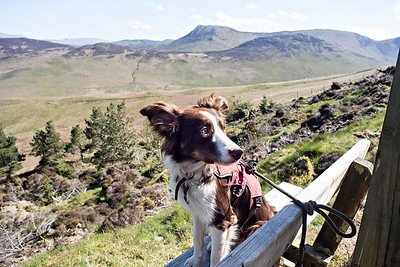 Thu 4th May : Katie On The Bench