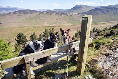 Thu 4th May : The Bench Overlooking Kinn