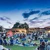 Summer Concerts: Mitchell Park