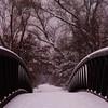 Bridge in Pink