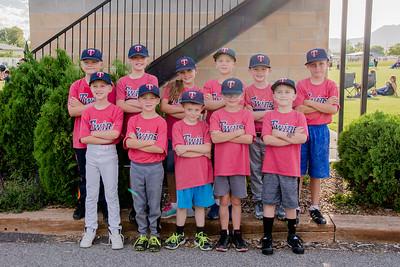 Twins 2018 Baseball