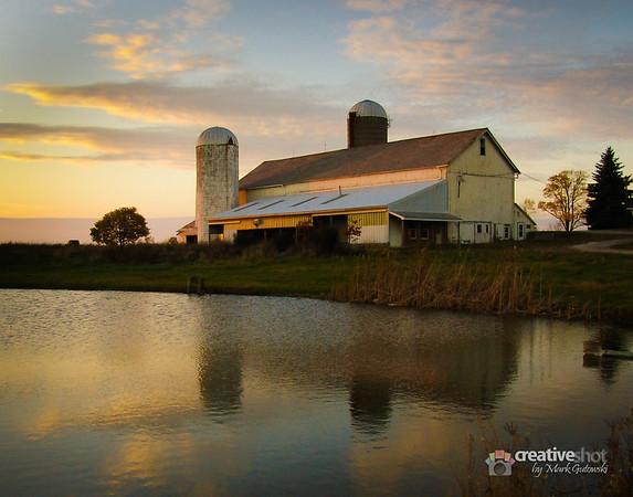 Remembering the Farm