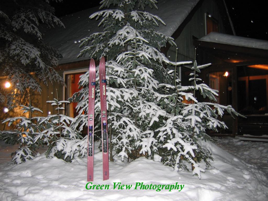 X-Country Skiis