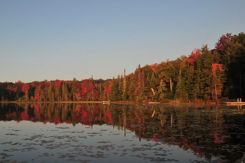 Twitchell Autumn