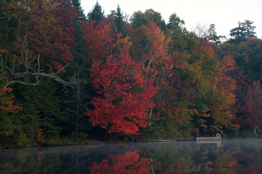 Brilliant Red leaves hang over the still water