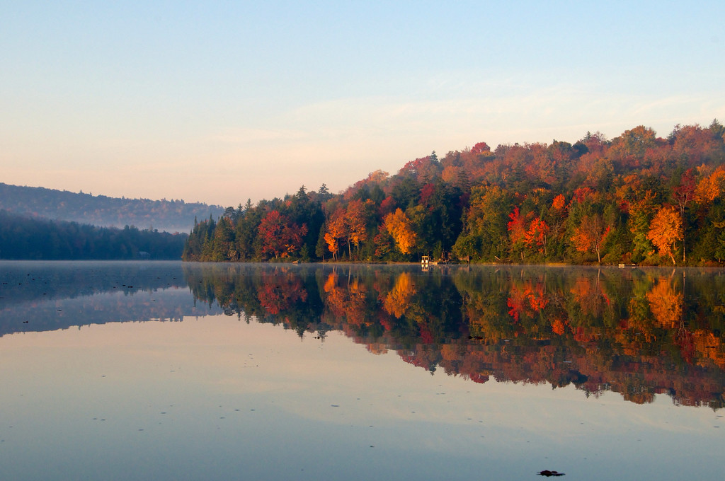 Sunlight Highlights the autumn  colors