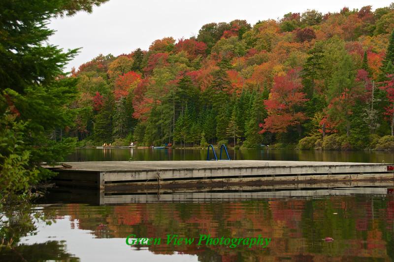 Autumn Along the Shore