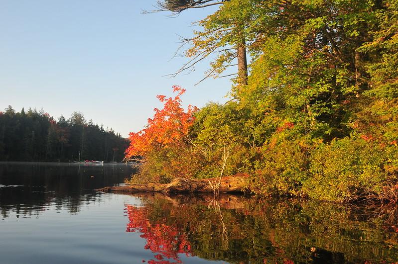 Twichell Autumn