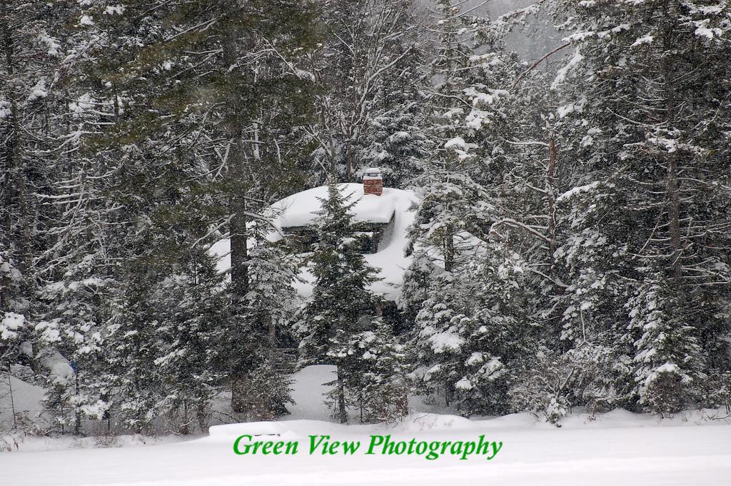 Winter Camp, 2008