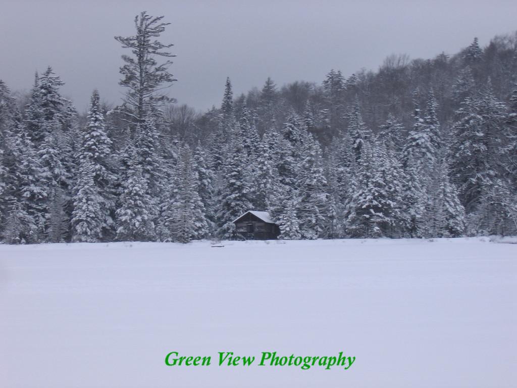Winter Tin Camp