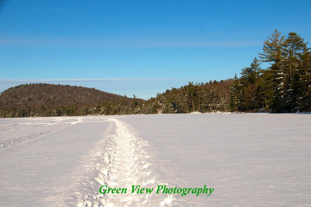 Tracks down the lake