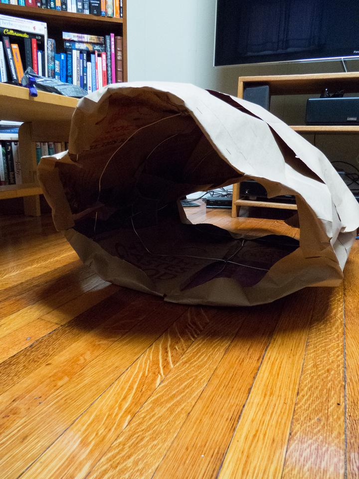 Shell paper mache base