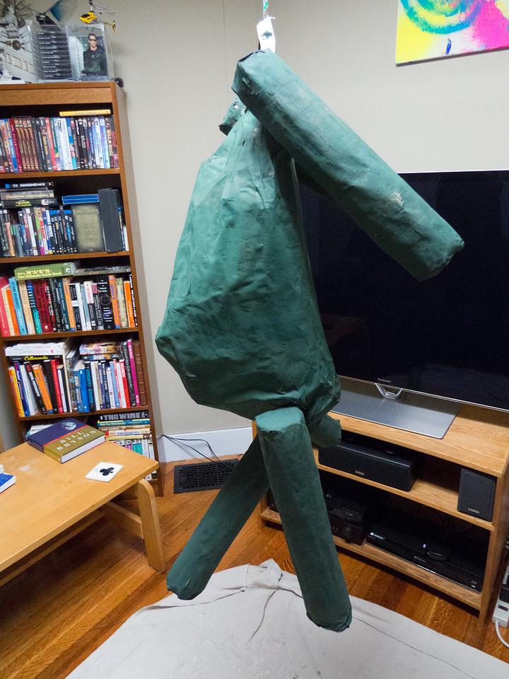 Tortoise  final coat