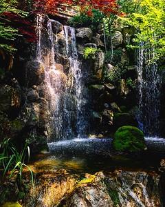Anderson Japanese Garden in Rockford, IL