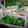 Bear Hill Farm of Tyngsboro sells some fresh vegetables at the Farmers Market in Tyngsboro on Saturday. SUN/Caley McGuane