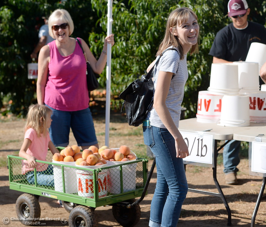 . Amanda Bullock of Chico smiles as she gets ready to check out with freshly picked peaches hand selected by 5-year-old Dylan (in wagon) and Mom Cindy Waring left, at the CSUC University Farm U-Pick Peach orchards in Chico, Calif. Thurs. Aug. 10, 2017. (Bill Husa -- Enterprise-Record)