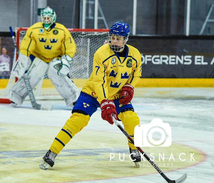 Junirhockey