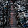 "The Kodiak Harbor.  <div class=""ss-paypal-button"">180924-KODIAK CAMPUS-JRE-0193.jpg</div><div class=""ss-paypal-button-end""></div>"