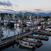 "The Kodiak Harbor.  <div class=""ss-paypal-button"">180924-KODIAK CAMPUS-JRE-0177.jpg</div><div class=""ss-paypal-button-end""></div>"