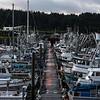 "The Kodiak Harbor.  <div class=""ss-paypal-button"">180924-KODIAK CAMPUS-JRE-0190.jpg</div><div class=""ss-paypal-button-end""></div>"