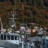 "The Kodiak Harbor.  <div class=""ss-paypal-button"">180924-KODIAK CAMPUS-JRE-0301.jpg</div><div class=""ss-paypal-button-end""></div>"