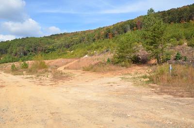 Cartersville Main Street wilderness road areas