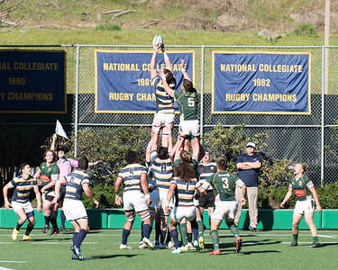 Cal Rugby, 01/24/15
