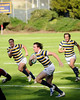 Cal Rugby defeats Stanford 99-0 on January 30, 2010