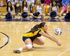 Cal Women's Volleyball defeats Oregon State in four sets ((25-14, 23-25, 25-17, 25-20)) Friday, Nov. 14, at Haas Pavilion.