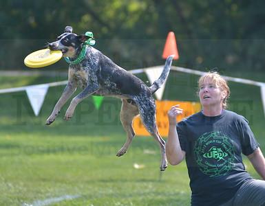 UFO Frisbee 2015