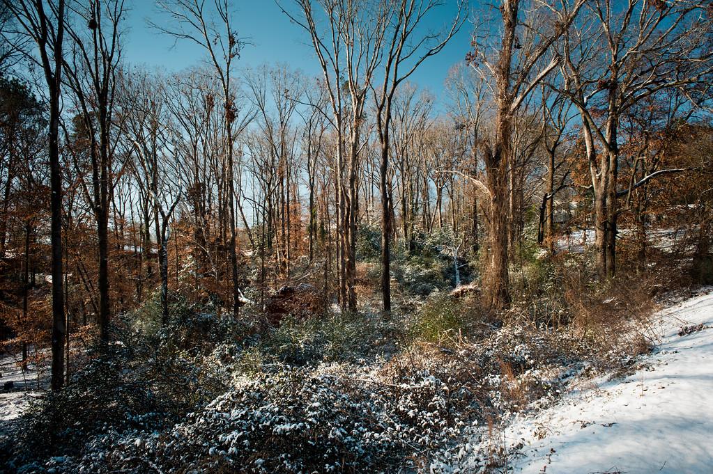 Athens, GA (Clarke County) January 2018