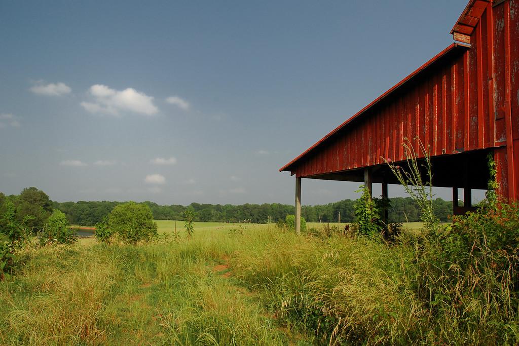 Clarke County (GA) May 2008
