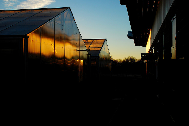Athens, GA (Clarke County) January 2009