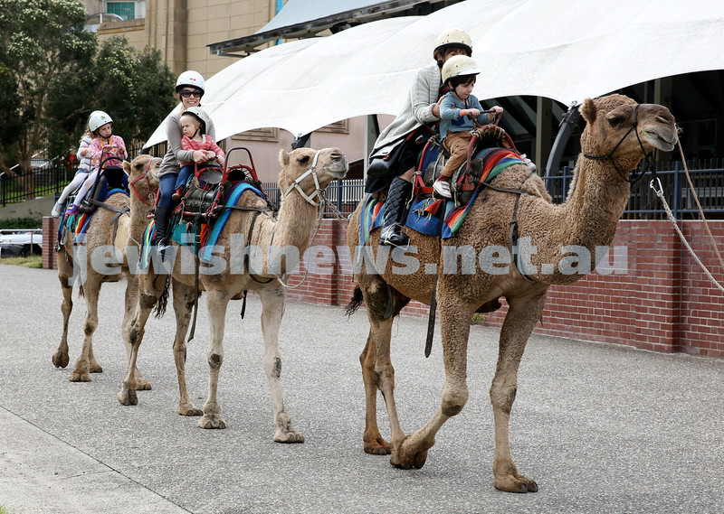 UIA Young Families fair at The Entertainment Quarter.  Camel Rides.