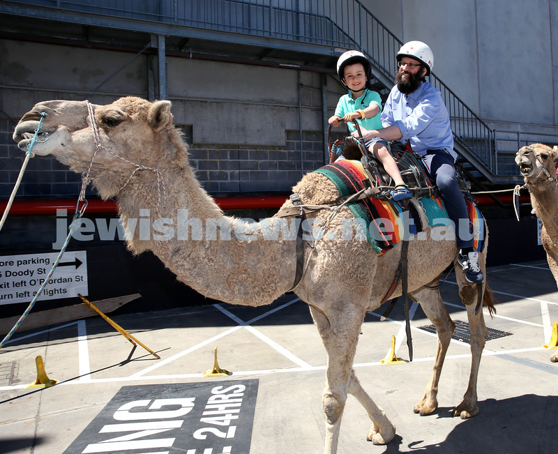 UIA Young Families Israeli Summer Days at The Venue. Dov and Shaul Schapiro ride a camel. Pic Noel Kessel