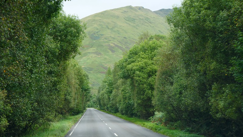 The drive from Dunoon to Glasgow is very green