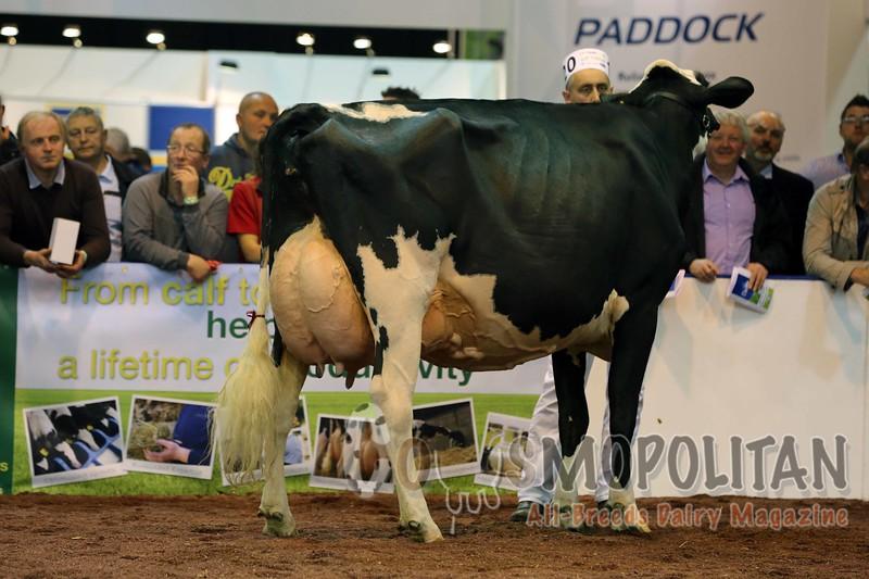UK Dairy Day 2015