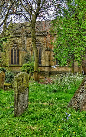 """Peaceful Wait"" - St. Mary Magdalen - Oxford"