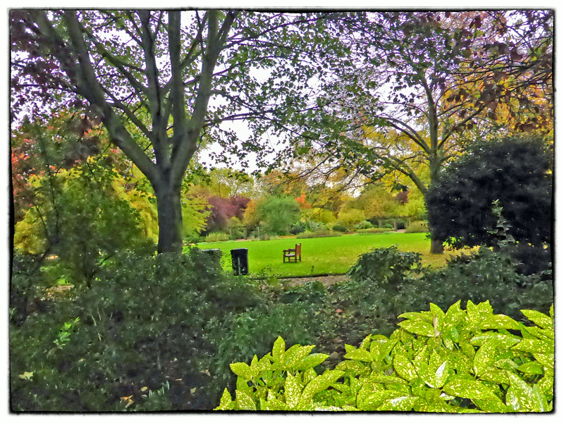 Regents Park, London, UK - 2013.
