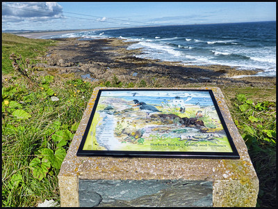 Bamburgh To Druridge Bay, The Northumberland Coast - 2014