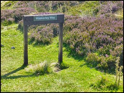 Waskerley Way, County Durham, UK - 2015.