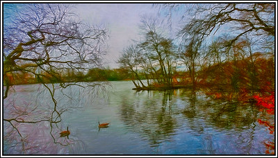 Bolam Lake Country Park, Northumberland, UK - 2016.