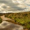 Blanchland Moors, Northumberland, United Kingdom. - 2014.