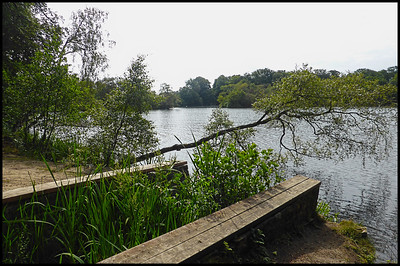 Bolam Lake Country Park, Northumberland, UK - 2018.