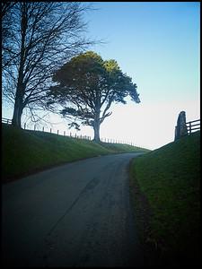 Hulne Park, Alnwick, Northumberland,  UK - 2020.